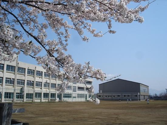 春の大潟町中学校。神社側からの校舎です。(中学校ホームページよりお借りしました。)